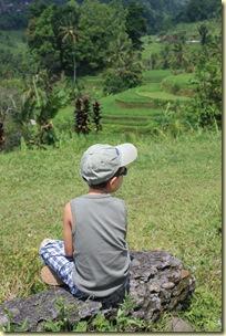 Bali2009_542