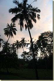 Bali2009_647