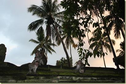 Bali2009_642