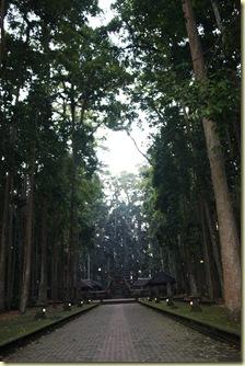 Bali2009_632